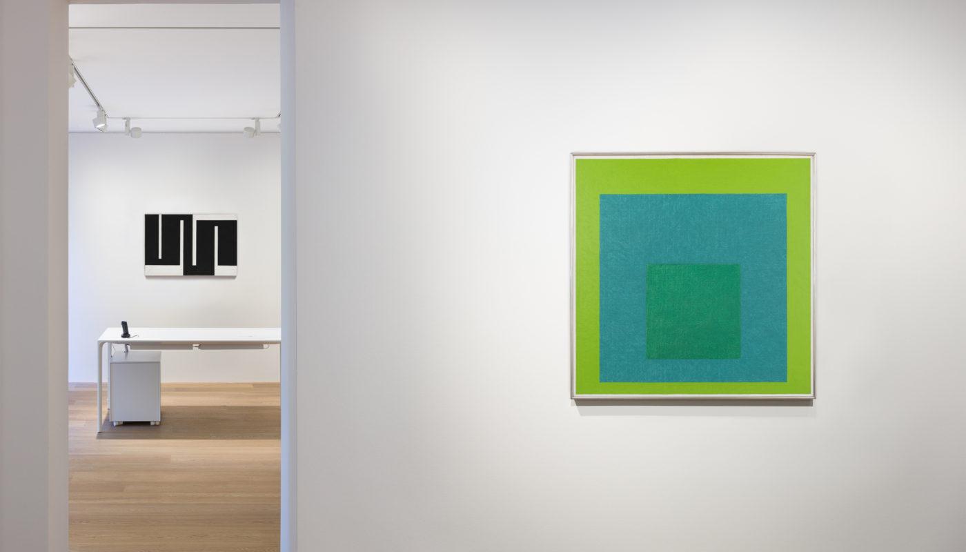 Archeus Schacky gallery installation