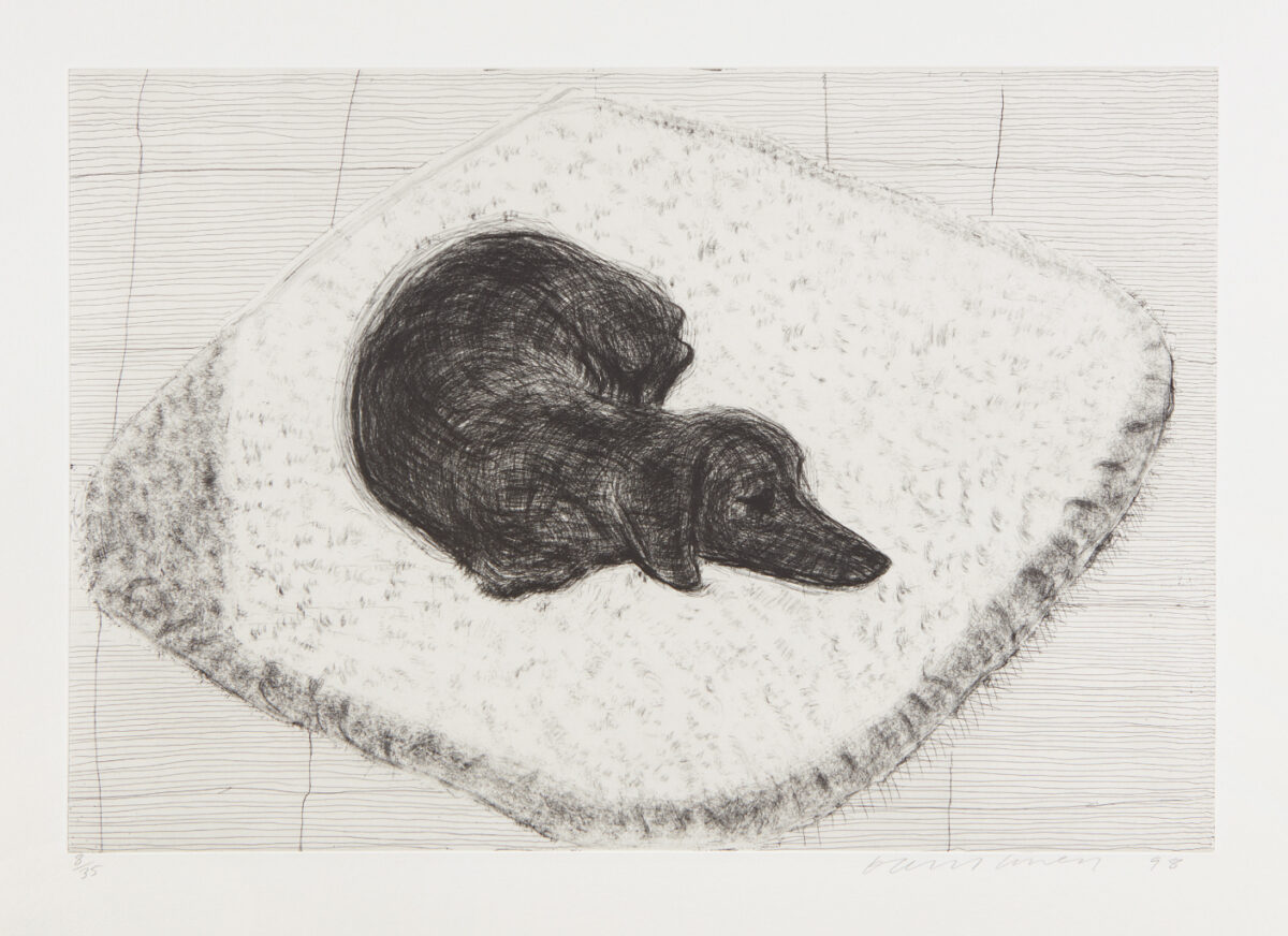 David Hockney Dog Etching no.12, from Dog Wall, original etching for sale