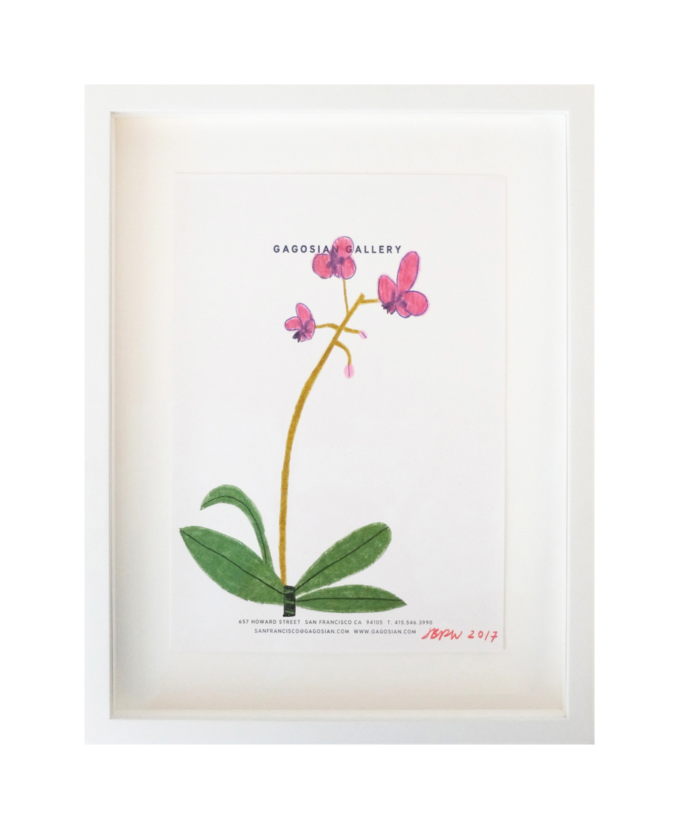 Jonas Wood Untitled signed coloured pencil flower drawing for sale