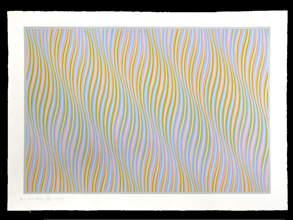 Bridget Riley Untitled [Rose] original colour screenprint for sale