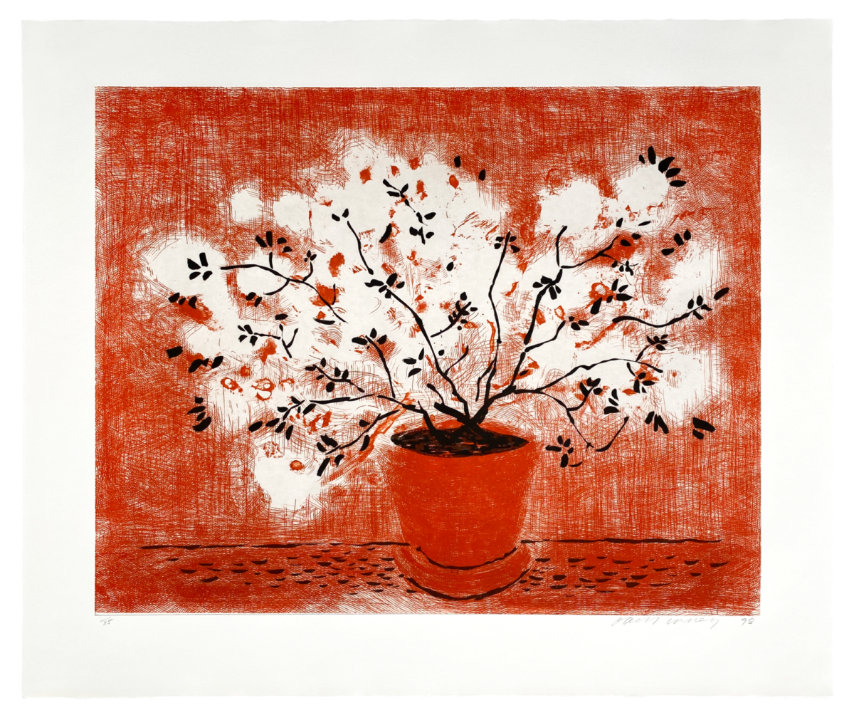 A21 08 HOCKNEY Red Wire Plant without edition