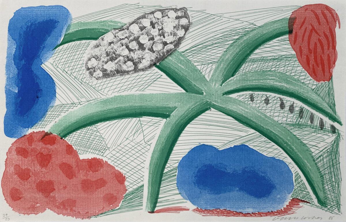 David Hockney Landscape With a Plant original home made print for sale