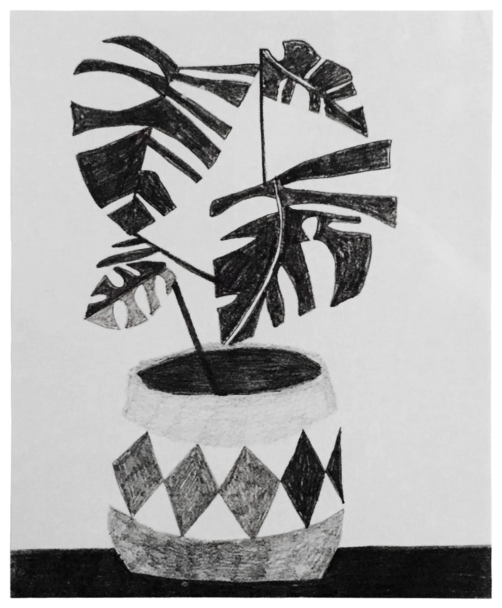 Jonas Wood Untitled signed plant print for sale