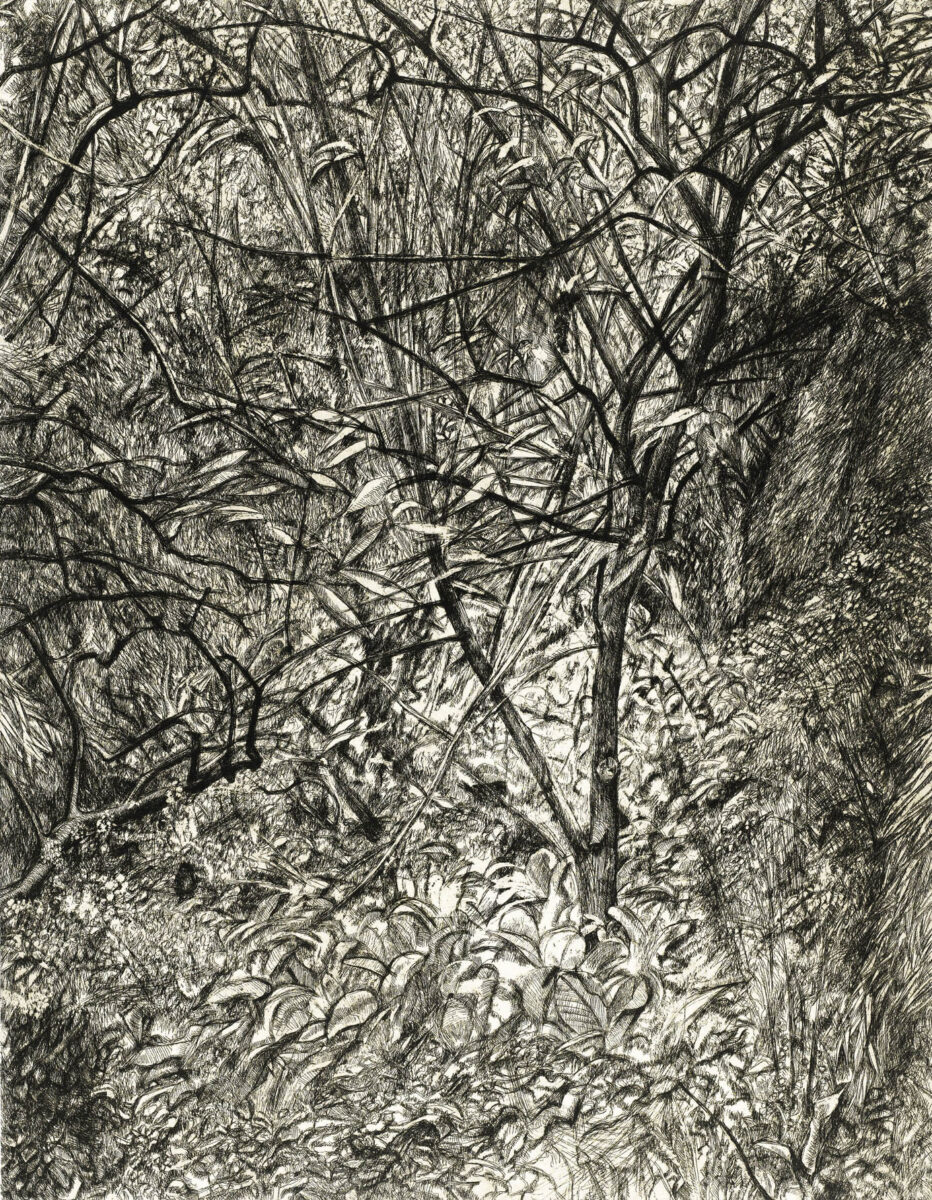 Lucian Freud Garden in Winter original signed etching for sale