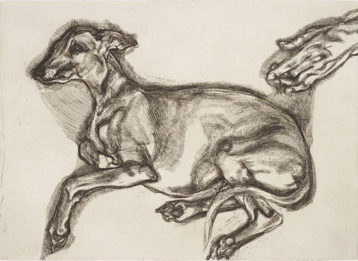 Lucian Freud Pluto aged Twelve original signed etching for sale