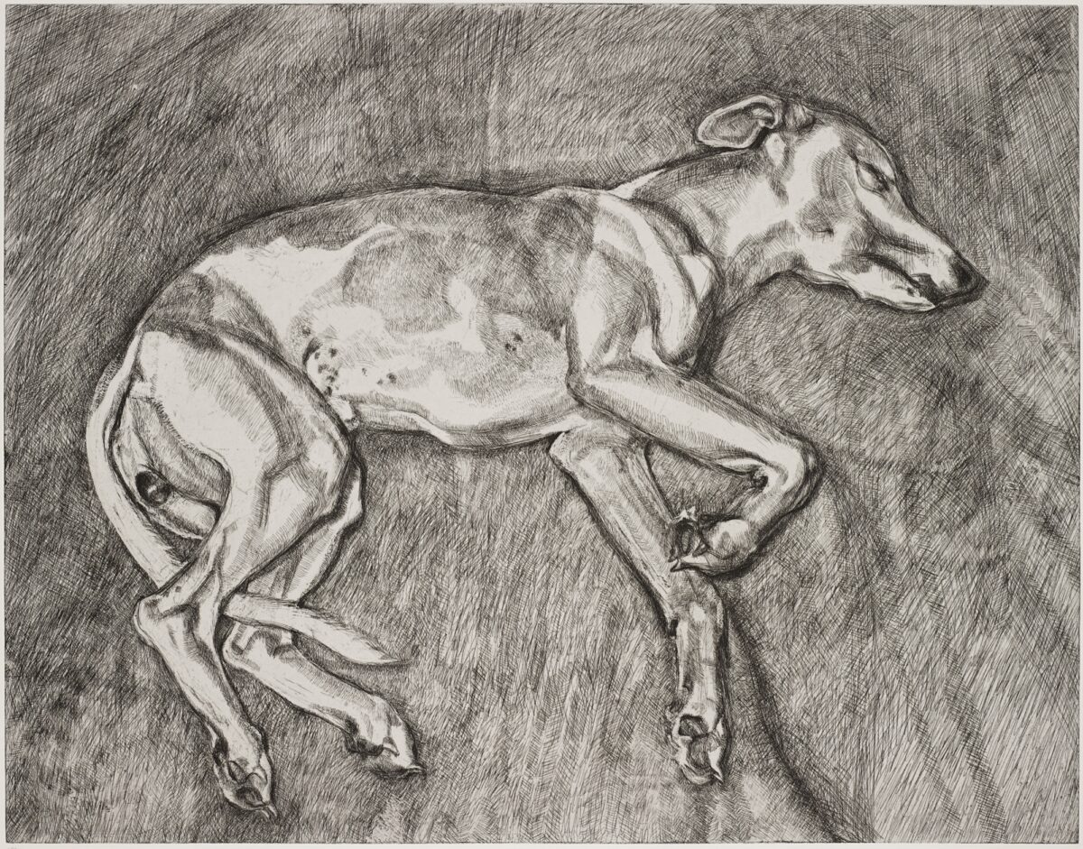 Lucian Freud Eli original signed etching for sale