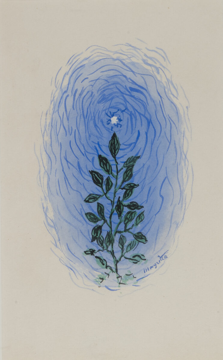 René Magritte Plant with Flowers and Leaves original gouache on paper signed by artist for sale