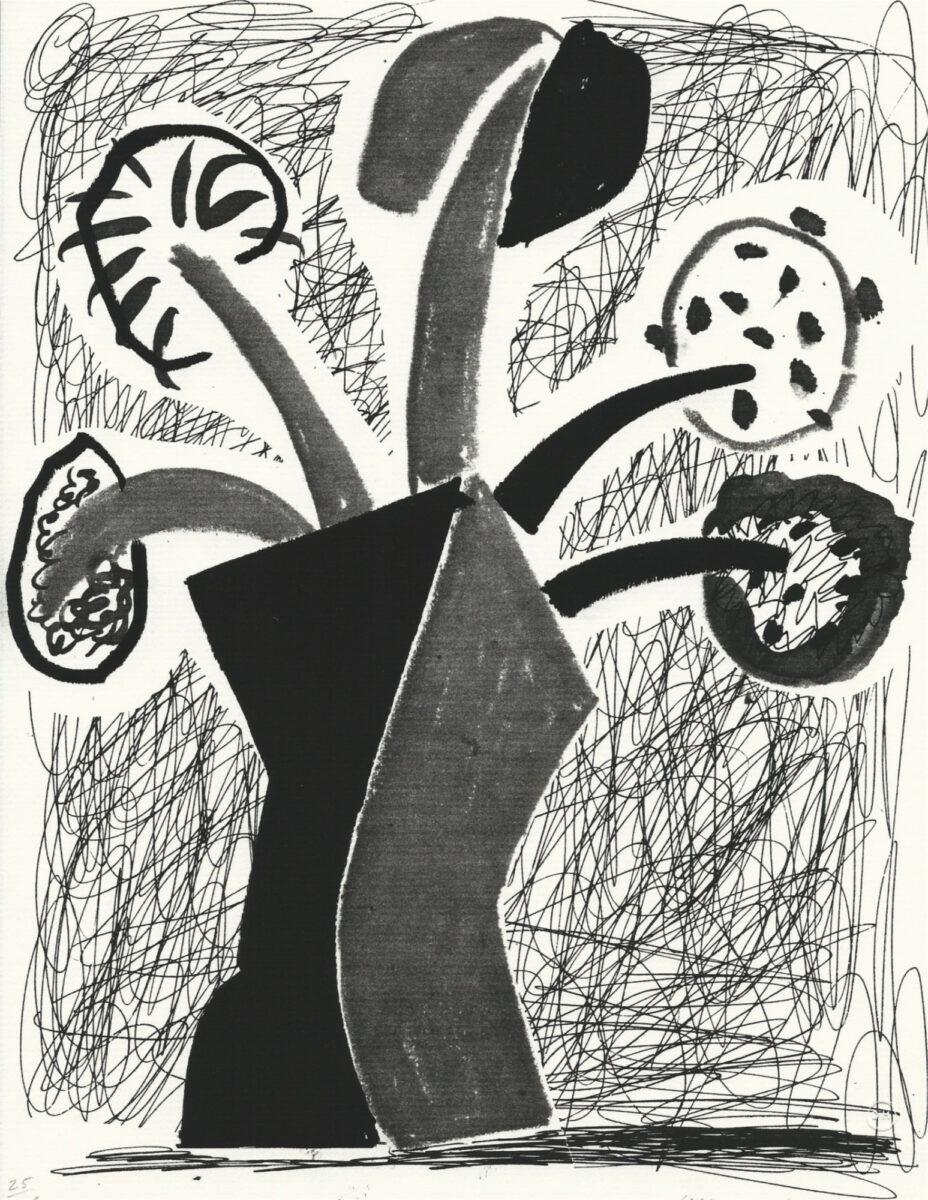David Hockney Growing, original home made print for sale
