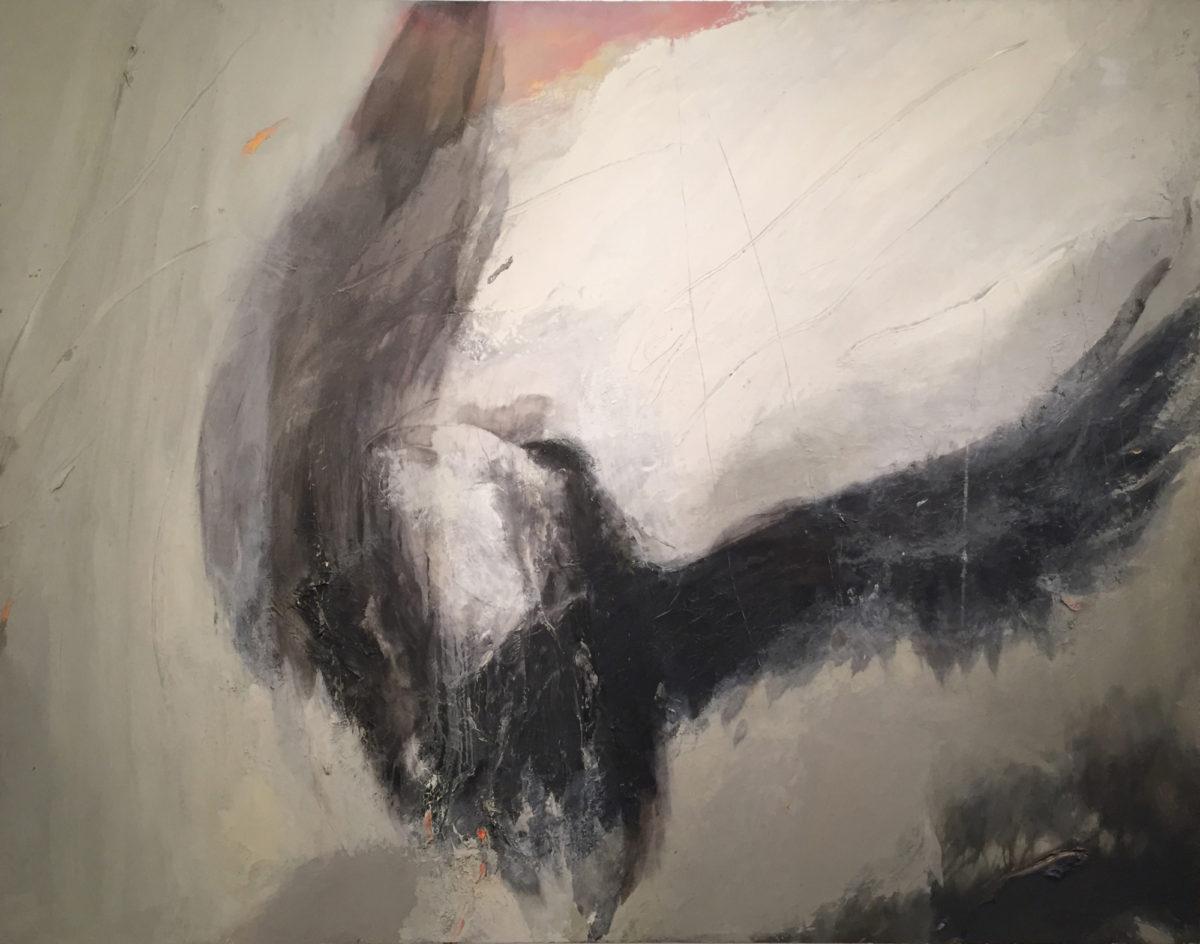 Odonoghue crow IV new