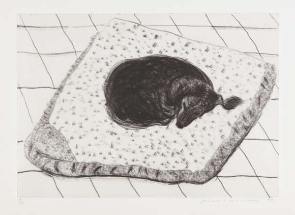 Dog Etching No. 15, from Dog Wall - David Hockney