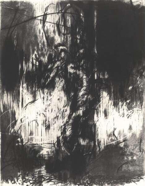 Olive Tree II - Hughie O'Donoghue